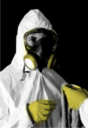 Mold remediation workers in Whitehorse